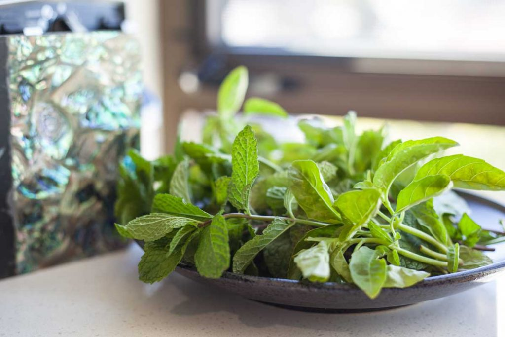 basil and peppermint on plate
