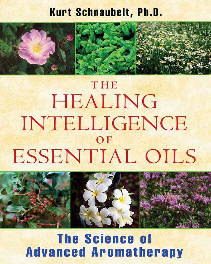 healing-traditional-medicine-intelligent-healing