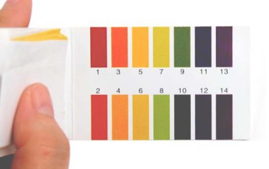 skin ph test litmus strips